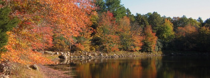 Pond_Fall_Foliage